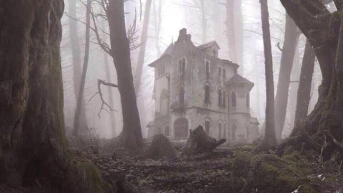 【画像11枚】世界の森で撮影された怖い写真、ホントに怖かった。・11枚目