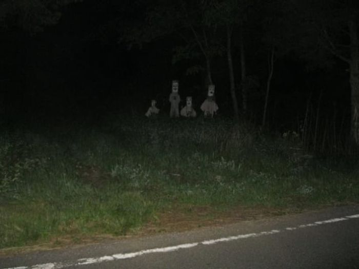 【画像11枚】世界の森で撮影された怖い写真、ホントに怖かった。・1枚目