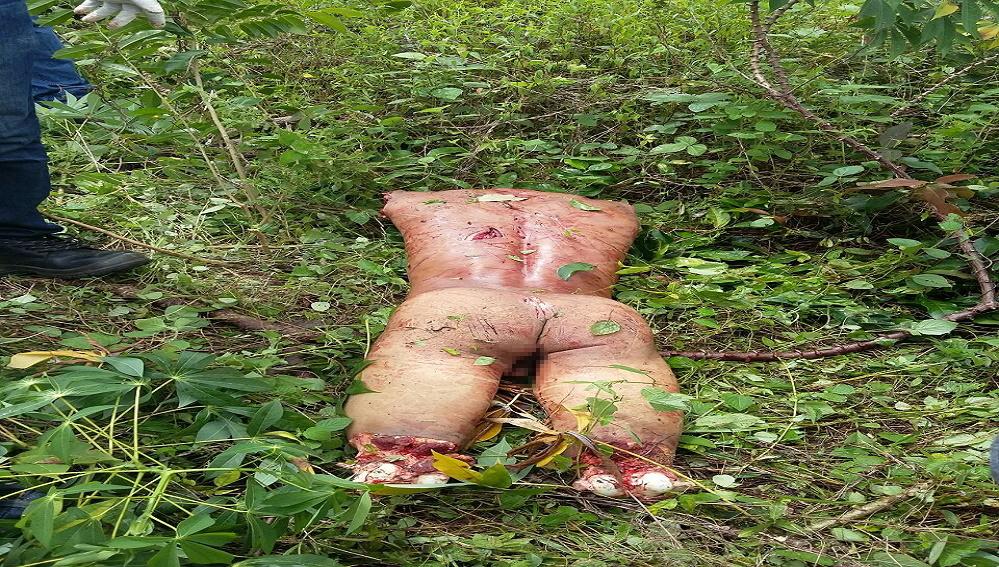 【超閲覧注意】ブラジルで売人が殺害され埋められたと思ったら・・・(画像)・2枚目