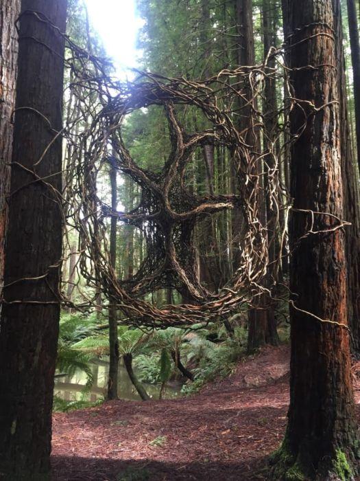 【画像11枚】世界の森で撮影された怖い写真、ホントに怖かった。・7枚目