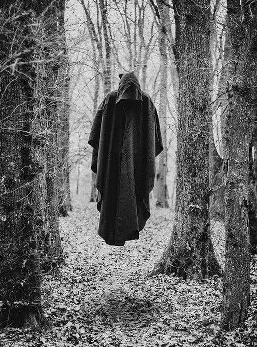 【画像11枚】世界の森で撮影された怖い写真、ホントに怖かった。・8枚目