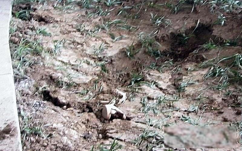 【閲覧注意】ミキサー車に押し潰された女性、ペシャンコ。(画像)・9枚目