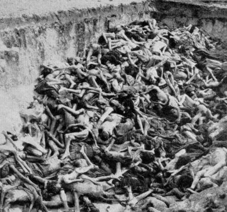 【閲覧注意】ナチス・ドイツ時代の「強制収容所」の様子がまさに地獄・・・(画像)・7枚目