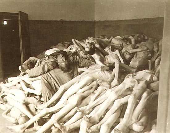 【閲覧注意】ナチス・ドイツ時代の「強制収容所」の様子がまさに地獄・・・(画像)・8枚目