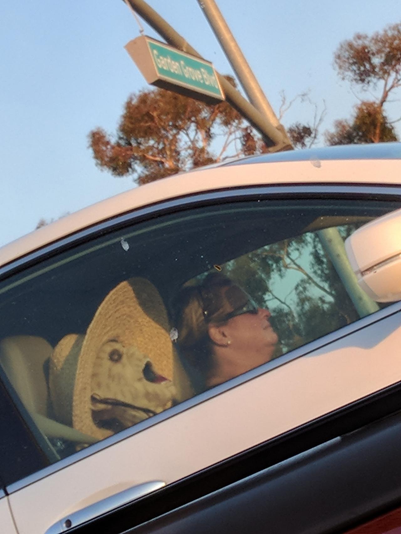 【恐怖】渋滞中に横に止まった車を見たら・・・声上げない自信ある???(画像)・1枚目