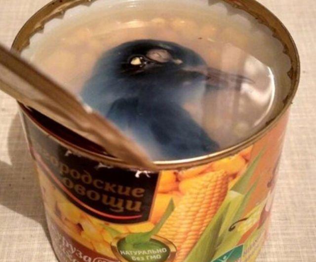 【衝撃】コーンの缶詰を開けた瞬間に腰抜かした。何でこんなん入ってんねん、、(画像)・2枚目