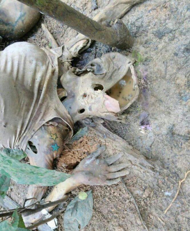 【閲覧注意】爆乳女性がミイラで発見されるが胸だけは残っている。 アレー、おかしいなぁ。(画像)・2枚目