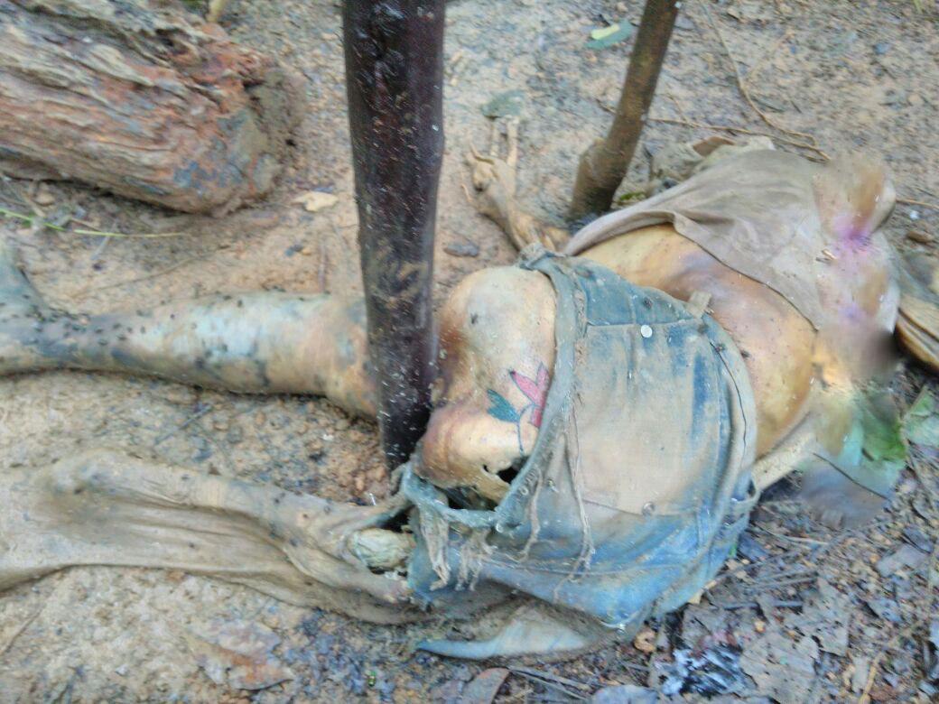 【閲覧注意】爆乳女性がミイラで発見されるが胸だけは残っている。 アレー、おかしいなぁ。(画像)・4枚目