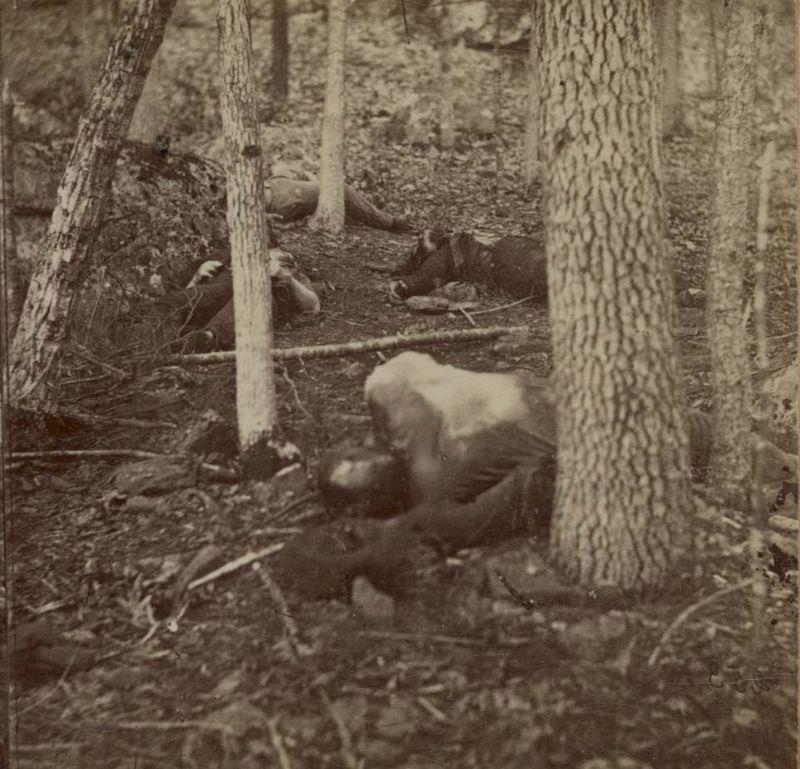 【閲覧注意】「南北戦争」で撮影された捕虜の写真、ISISよりヒドイ・・・(画像)・15枚目