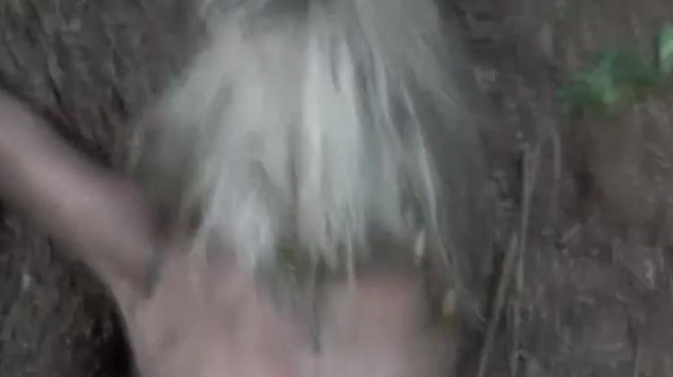 【閲覧注意】森に女性の遺体を2体放置したキチガイの死姦記録映像・・・・10枚目