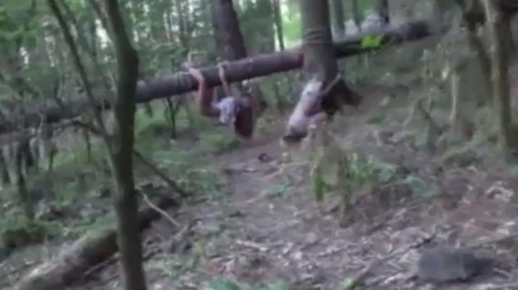 【閲覧注意】森に女性の遺体を2体放置したキチガイの死姦記録映像・・・・1枚目