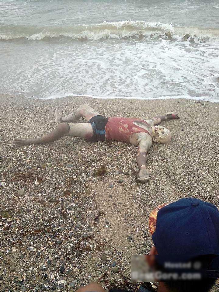 【閲覧注意】ビーチに流れ着いて最もトラウマになるもの・・・(画像)・3枚目
