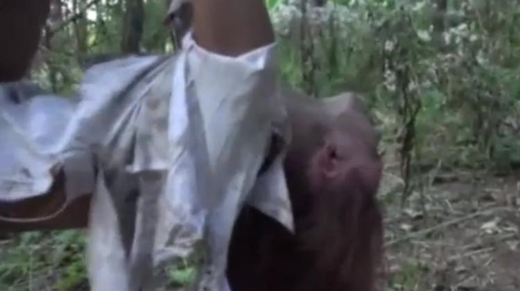 【閲覧注意】森に女性の遺体を2体放置したキチガイの死姦記録映像・・・・7枚目
