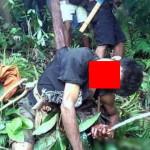 【閲覧注意】森でこの遺体を発見したらトラウマになるわ。。(画像)