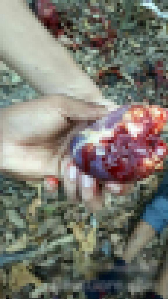 【超閲覧注意】ブラジルのギャング、残虐のフルコースを実行する・・・(画像)・7枚目
