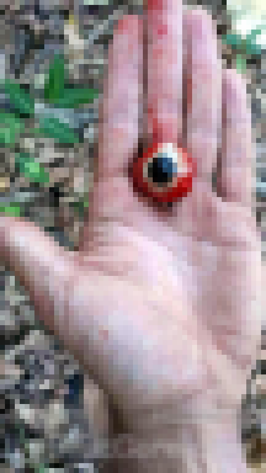 【超閲覧注意】ブラジルのギャング、残虐のフルコースを実行する・・・(画像)・8枚目