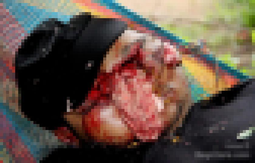 """【超閲覧注意】恨みを晴らすべくターゲットの顔面を""""散弾銃""""で吹き飛ばした事件現場。。(画像)・2枚目"""