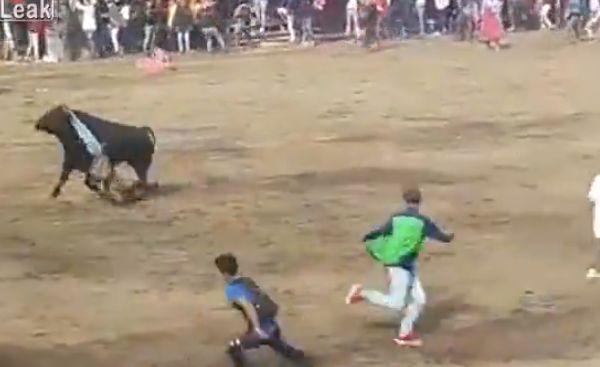 【凄惨】一発目のあと牛の真ん前で目を覚ました闘牛士ニキ、タイミング悪すぎ・・・・・(動画、画像)・2枚目