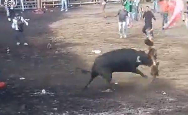 【凄惨】一発目のあと牛の真ん前で目を覚ました闘牛士ニキ、タイミング悪すぎ・・・・・(動画、画像)・8枚目
