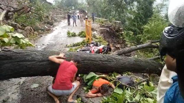 【ハードラック】たまたま倒れてきた倒木に潰されたバイクライダー、これは不運過ぎだろ・・・・・(画像)・1枚目