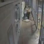 【即鎮圧】ニューメキシコの刑務所で暴動が起きる瞬間の映像、海外ドラマみたい・・・・(動画)