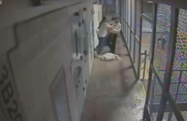 【即鎮圧】ニューメキシコの刑務所で暴動が起きる瞬間の映像、海外ドラマみたい・・・・(動画)・2枚目