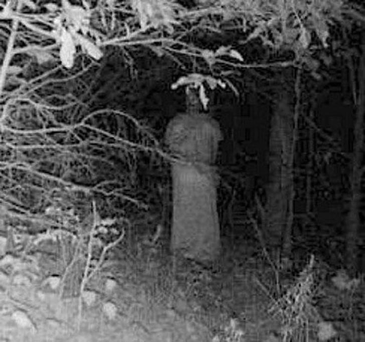 【恐怖】狩猟用モーションセンサーカメラに映った物体、ガチで怖過ぎだろ・・・・・(画像)・3枚目