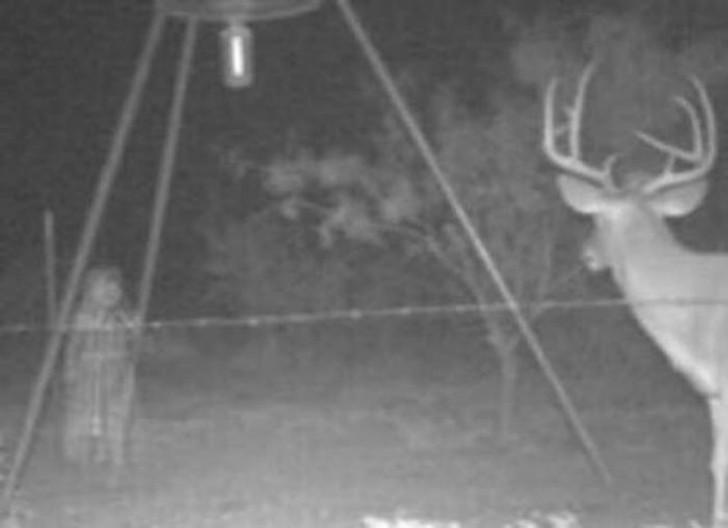 【恐怖】狩猟用モーションセンサーカメラに映った物体、ガチで怖過ぎだろ・・・・・(画像)・4枚目