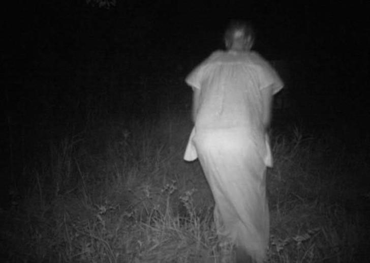 【恐怖】狩猟用モーションセンサーカメラに映った物体、ガチで怖過ぎだろ・・・・・(画像)・5枚目