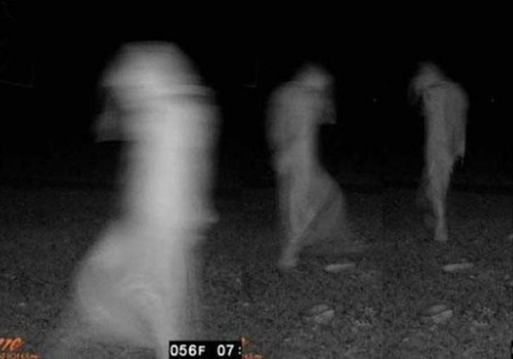 【恐怖】狩猟用モーションセンサーカメラに映った物体、ガチで怖過ぎだろ・・・・・(画像)・7枚目