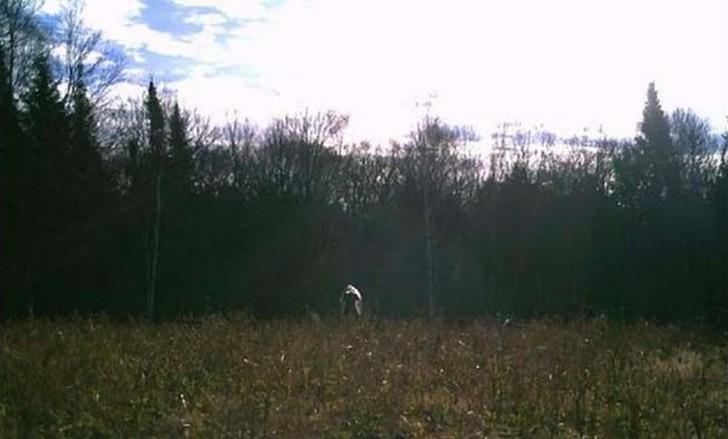 【恐怖】狩猟用モーションセンサーカメラに映った物体、ガチで怖過ぎだろ・・・・・(画像)・12枚目
