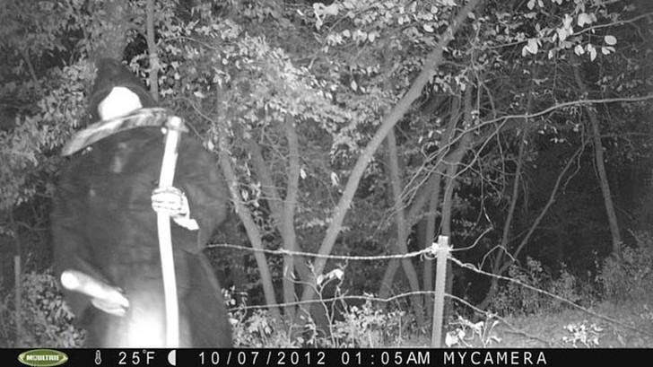 【恐怖】狩猟用モーションセンサーカメラに映った物体、ガチで怖過ぎだろ・・・・・(画像)・13枚目