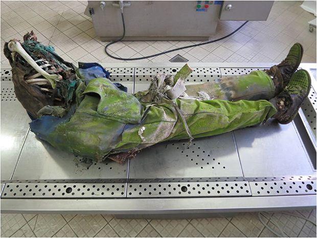【閲覧注意】ポーランドで発見された13年前の首つり死体、全身に蜂とリスの巣を作られる・・・・・(画像)・4枚目