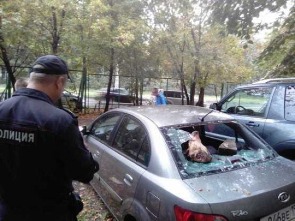 【過激】ロシアの埋め立て反対派議員さん、推進派に嫌がらせでとんでもないモノを車にブチ込まれる!!(画像)・1枚目