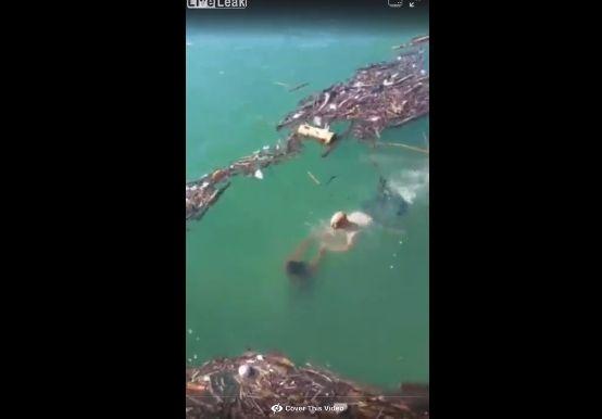 【衝撃】川で溺れる黒人男性と助けようとした白人男性、怖過ぎる結末・・・・・(動画)・1枚目