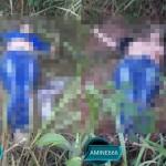 【遺体注意】道路脇に捨てられた女性の死体、犯人は別れた夫ってモロバレだろそれ・・・・・(画像)
