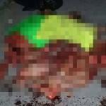 【メキシコの日常】メキシコのギャングメンバーさん、ライバルグループにとんでもない殺され方される・・・・(画像)
