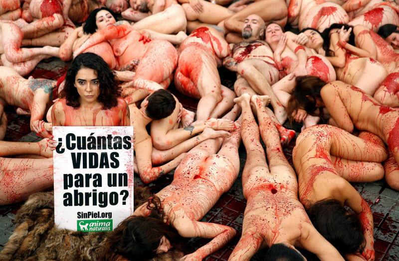 【キチ●イ】動物保護団体さん、相変わらず意味の分からない抗議で世間を騒がせる・・・・・(画像)・3枚目