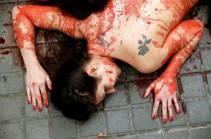 【キチ●イ】動物保護団体さん、相変わらず意味の分からない抗議で世間を騒がせる・・・・・(画像)・5枚目
