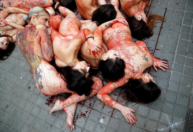 【キチ●イ】動物保護団体さん、相変わらず意味の分からない抗議で世間を騒がせる・・・・・(画像)・15枚目