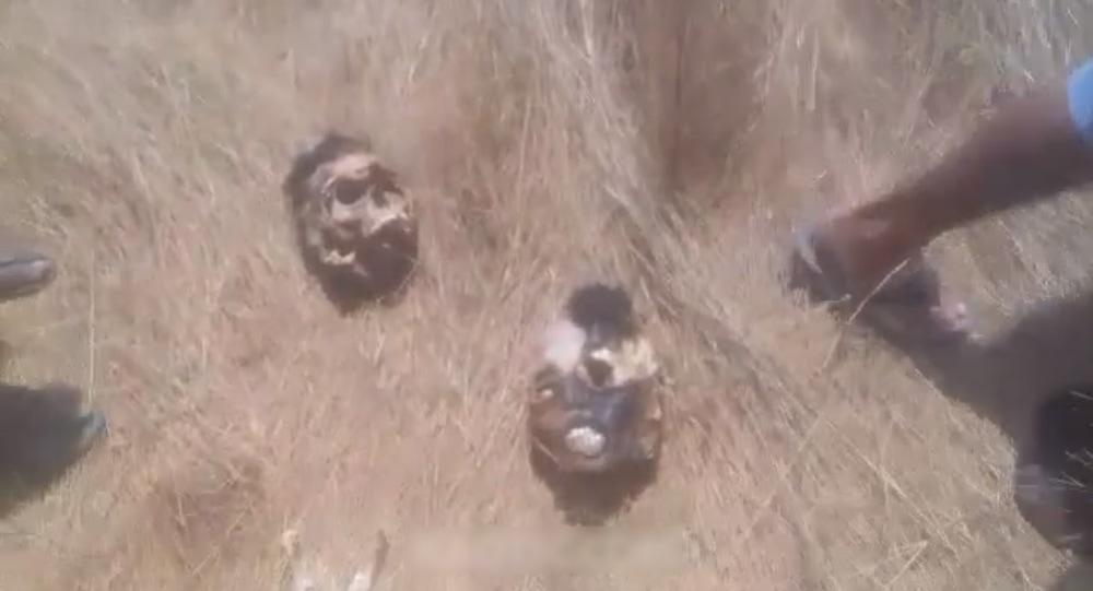【閲覧注意】ブラジルのギャングに捕まった男2人、短時間のうちにこうなる・・・・・(画像、動画)・2枚目