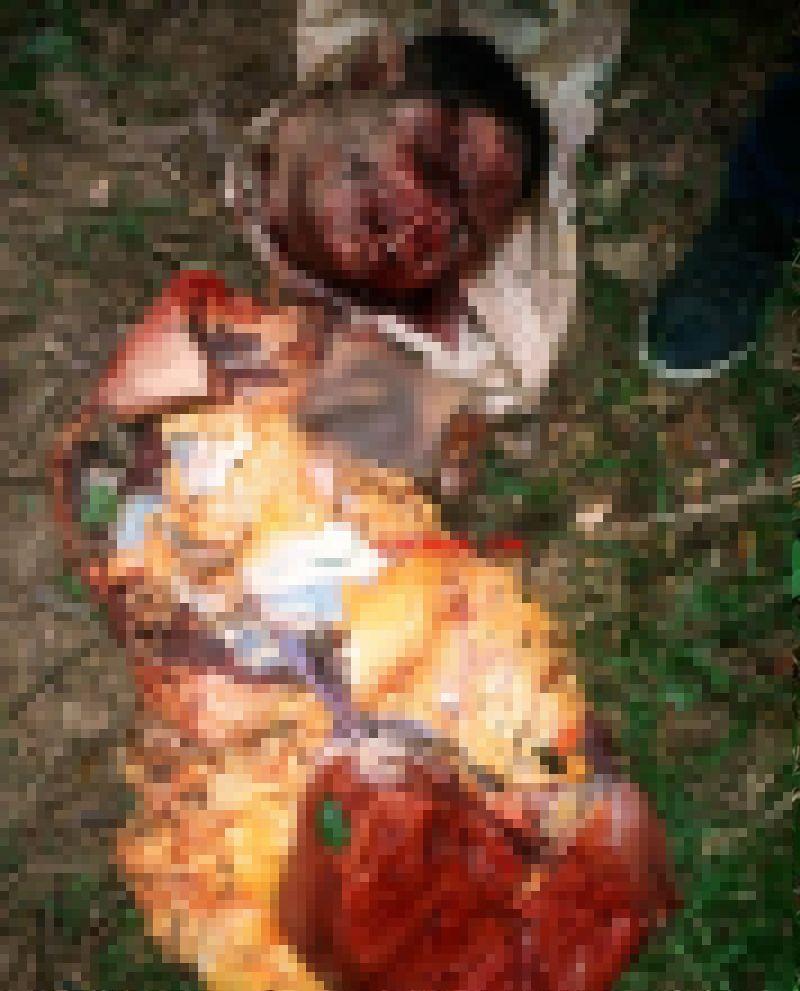 【グロ注意】ブラジルギャングさん、対立グループに拉致され食肉ばりにバラバラに解体される・・・・・(画像)・2枚目
