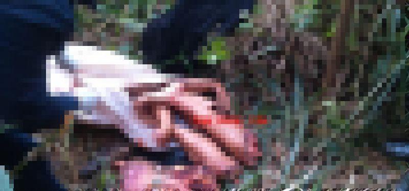 【グロ注意】ブラジルギャングさん、対立グループに拉致され食肉ばりにバラバラに解体される・・・・・(画像)・6枚目