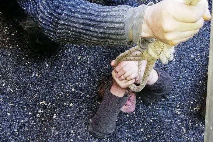 【危険】ヒマワリの種の保存タンクに転落したウクライナ人女性、危うく死にかける・・・・・(画像)・3枚目