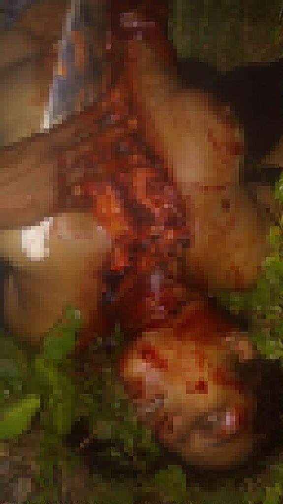 【グロ注意】ブラジルのギャングに誘拐された女性、山中で無残な姿となって発見される・・・・・(動画)・1枚目