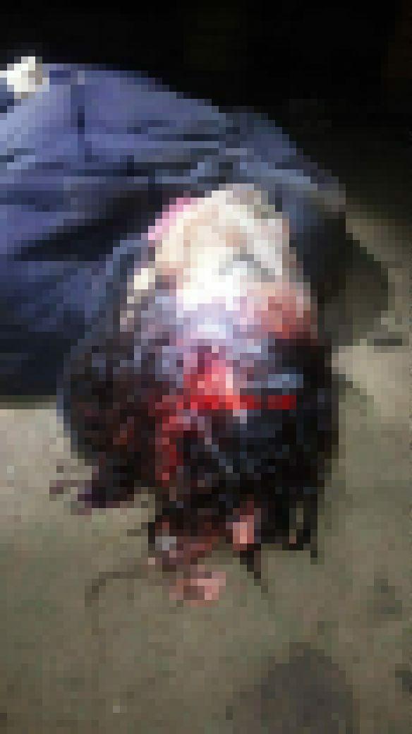 【世も末】ブラジルの小6少女、交際を認めない母親を彼氏とボッコボコに撲殺してしまう・・・・・(画像)・4枚目
