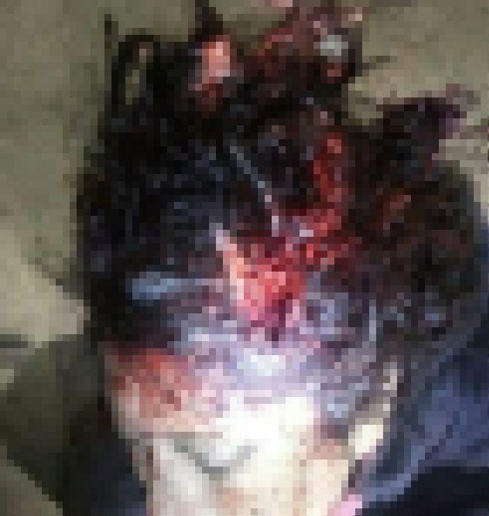【世も末】ブラジルの小6少女、交際を認めない母親を彼氏とボッコボコに撲殺してしまう・・・・・(画像)・5枚目