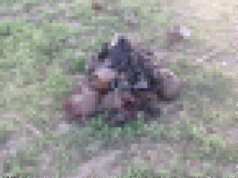 【衝撃】対人じゃなく対戦車地雷を踏んだ人間、木端微塵になる・・・・・(画像)・4枚目