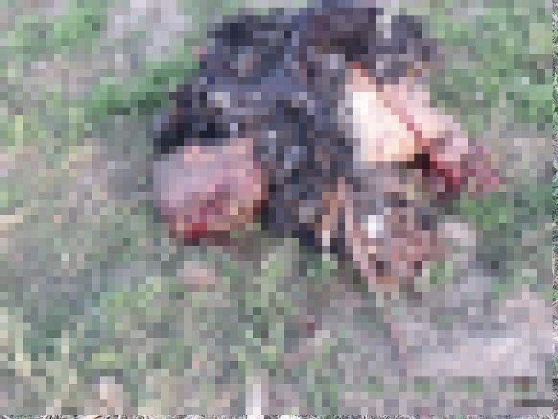【衝撃】対人じゃなく対戦車地雷を踏んだ人間、木端微塵になる・・・・・(画像)・6枚目