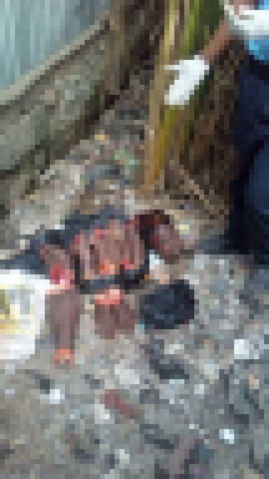 """【グロ注意】アフリカのキリスト教絶対殺すマン""""フラニ族""""、コイツ等マジ土人で怖すぎ・・・・・(画像)・2枚目"""